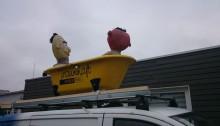 Ernie und Bert auf der Stadtkoppel.